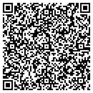 QR-код с контактной информацией организации СТРОЙМАШИНА