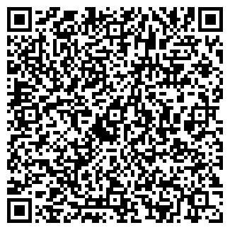 QR-код с контактной информацией организации ШЕПЕЛЕВ, ИП