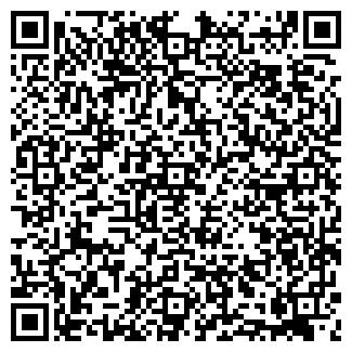 QR-код с контактной информацией организации ДОРОЖНЫЙ