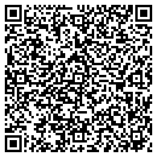 QR-код с контактной информацией организации ДШИ ФИЛИАЛ