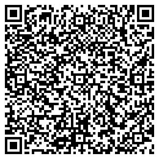 QR-код с контактной информацией организации РАВДИЗ, ОАО