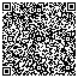 QR-код с контактной информацией организации ХОЛИДЕЙС