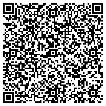 QR-код с контактной информацией организации ШИШКИНСКОЕ, ТОО