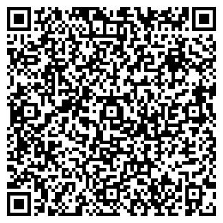 """QR-код с контактной информацией организации """"Аланские Барсы"""""""