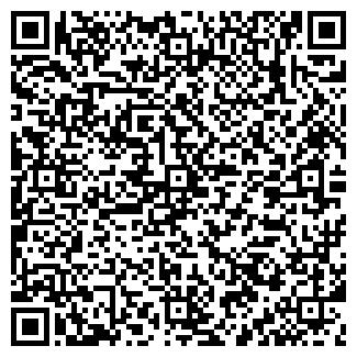 QR-код с контактной информацией организации НАБОКОВ, ЧП