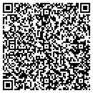 QR-код с контактной информацией организации ЛСФ, ООО