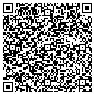 QR-код с контактной информацией организации ДАМИНГО