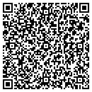 QR-код с контактной информацией организации ВИЗАРД ТК
