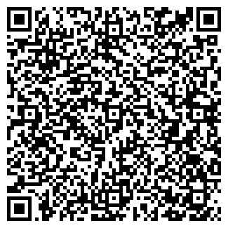 QR-код с контактной информацией организации ВЕМА, ООО