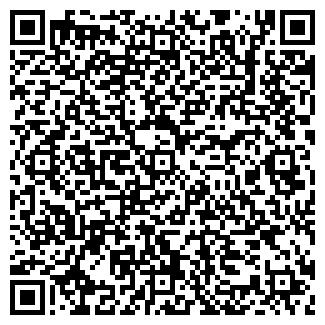 QR-код с контактной информацией организации АЙТИ РЕШЕНИЯ