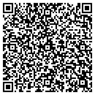 QR-код с контактной информацией организации БИС ЛТД.