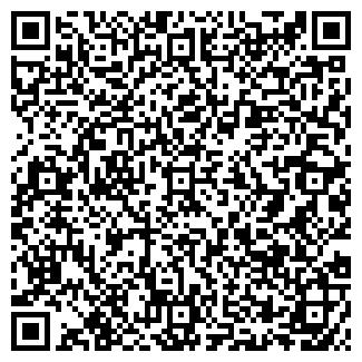 QR-код с контактной информацией организации СИБИРИАДА