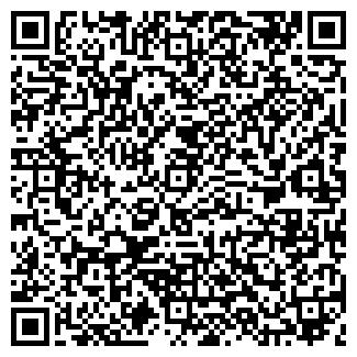 QR-код с контактной информацией организации ГОДЫНА, ЧП