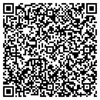 QR-код с контактной информацией организации РИЦА, ООО