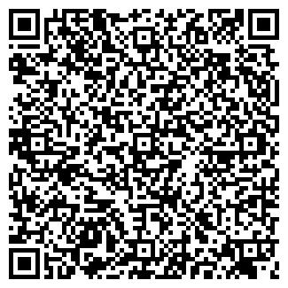 QR-код с контактной информацией организации № 208 ГП