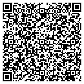 QR-код с контактной информацией организации № 241 ГП