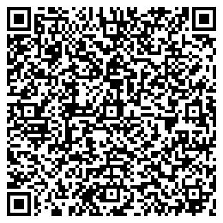 QR-код с контактной информацией организации № 241, МУП