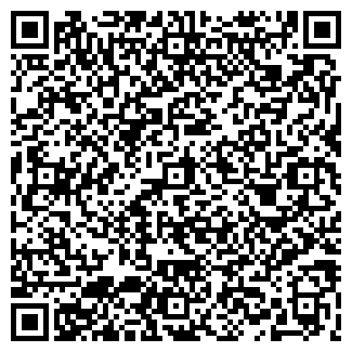 QR-код с контактной информацией организации ИРБИС, ИП