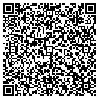 QR-код с контактной информацией организации РОГОЖИН, ЧП