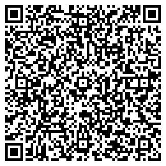 QR-код с контактной информацией организации ПИНЕМА ОАО