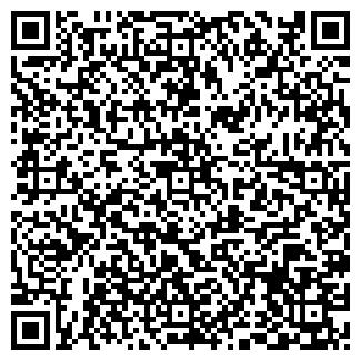 QR-код с контактной информацией организации ВИЛГА, ООО