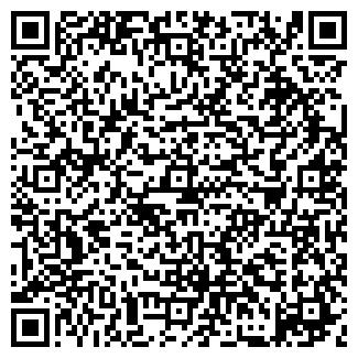 QR-код с контактной информацией организации ИП БОРДОВСКИЙ