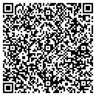 QR-код с контактной информацией организации DATASIB