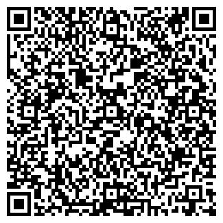 QR-код с контактной информацией организации № 163