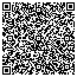 QR-код с контактной информацией организации № 171