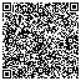 QR-код с контактной информацией организации № 173