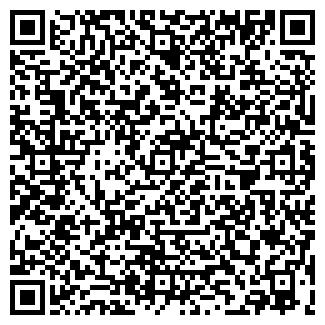 QR-код с контактной информацией организации ЛИЦЕЙ НГТУ