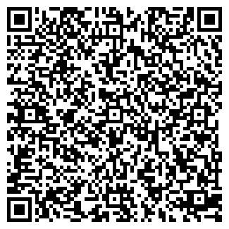 QR-код с контактной информацией организации ЭЛУИЗ ЧУП