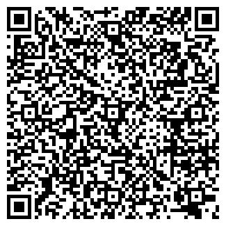QR-код с контактной информацией организации М-СТУДИО