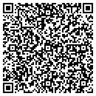 QR-код с контактной информацией организации КРИЗСКИЙ В.И.