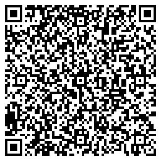 QR-код с контактной информацией организации ЛИСИН Д. А.