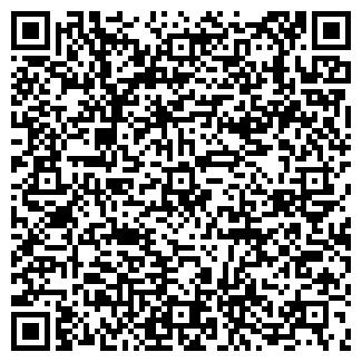QR-код с контактной информацией организации СОЛОВЬЕВ В. А.