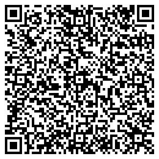 QR-код с контактной информацией организации АЛЬФА-ВЕРСИЯ