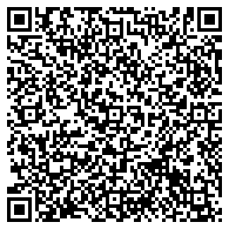QR-код с контактной информацией организации ДВВ ИНВЕСТ