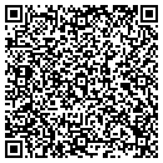 QR-код с контактной информацией организации ЛИЗИНГ