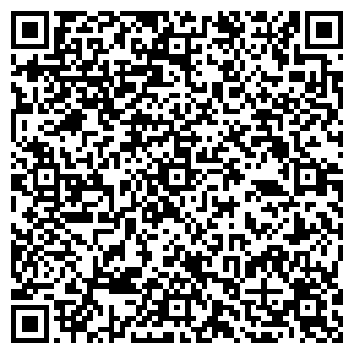 QR-код с контактной информацией организации № 119