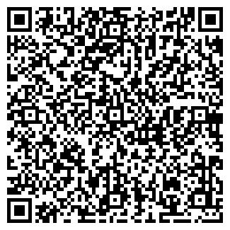QR-код с контактной информацией организации № 243