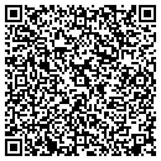 QR-код с контактной информацией организации № 293