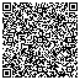 QR-код с контактной информацией организации АЛТАЙЕВРОМОТОРС