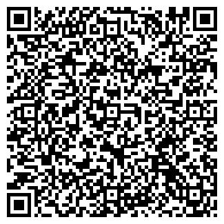 QR-код с контактной информацией организации МАЛОВ И.В.