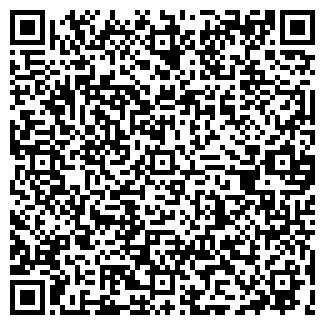 QR-код с контактной информацией организации ШМИДТ Е.Г.