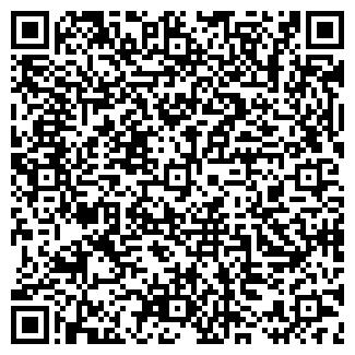 QR-код с контактной информацией организации СИНИЦИН И.С.