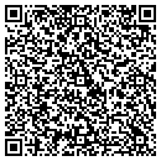 QR-код с контактной информацией организации МЕТАЛЛИНВЕСТ