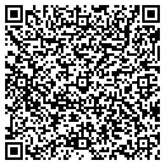 QR-код с контактной информацией организации АЛТАЙ-ЦИКЛОН