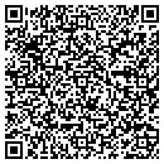 QR-код с контактной информацией организации ПФАЙФЕР А. А.