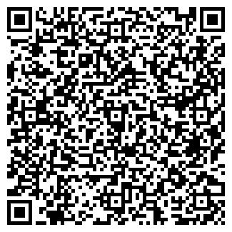 QR-код с контактной информацией организации АЛТАЙ-ХОЛДИНГ